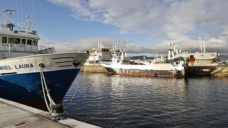 Industria y flota se enzarzan por el alza en la importación de atún con arancel cero