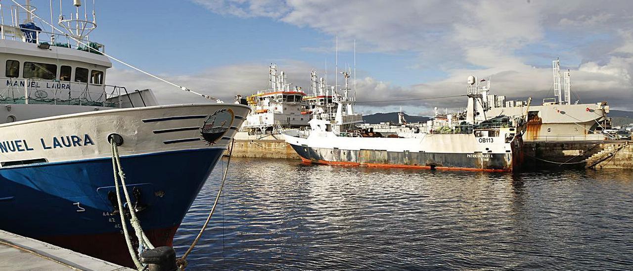 Flota pesquera amarrada ayer en Beiramar.  | // RICARDO GROBAS