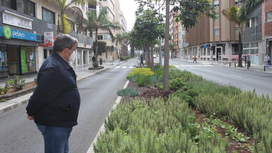 Las nuevas obras aumentan la masa verde de la capital