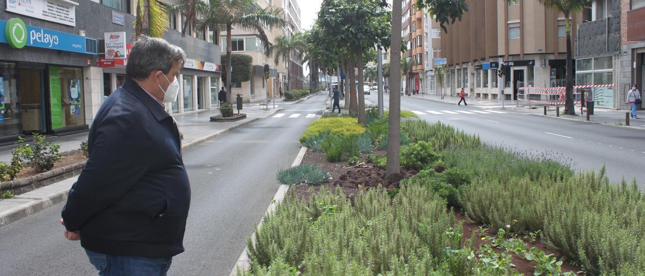 Las nuevas obras aumentan la masa verde de la ciudad con más de 22.000 árboles y plantas
