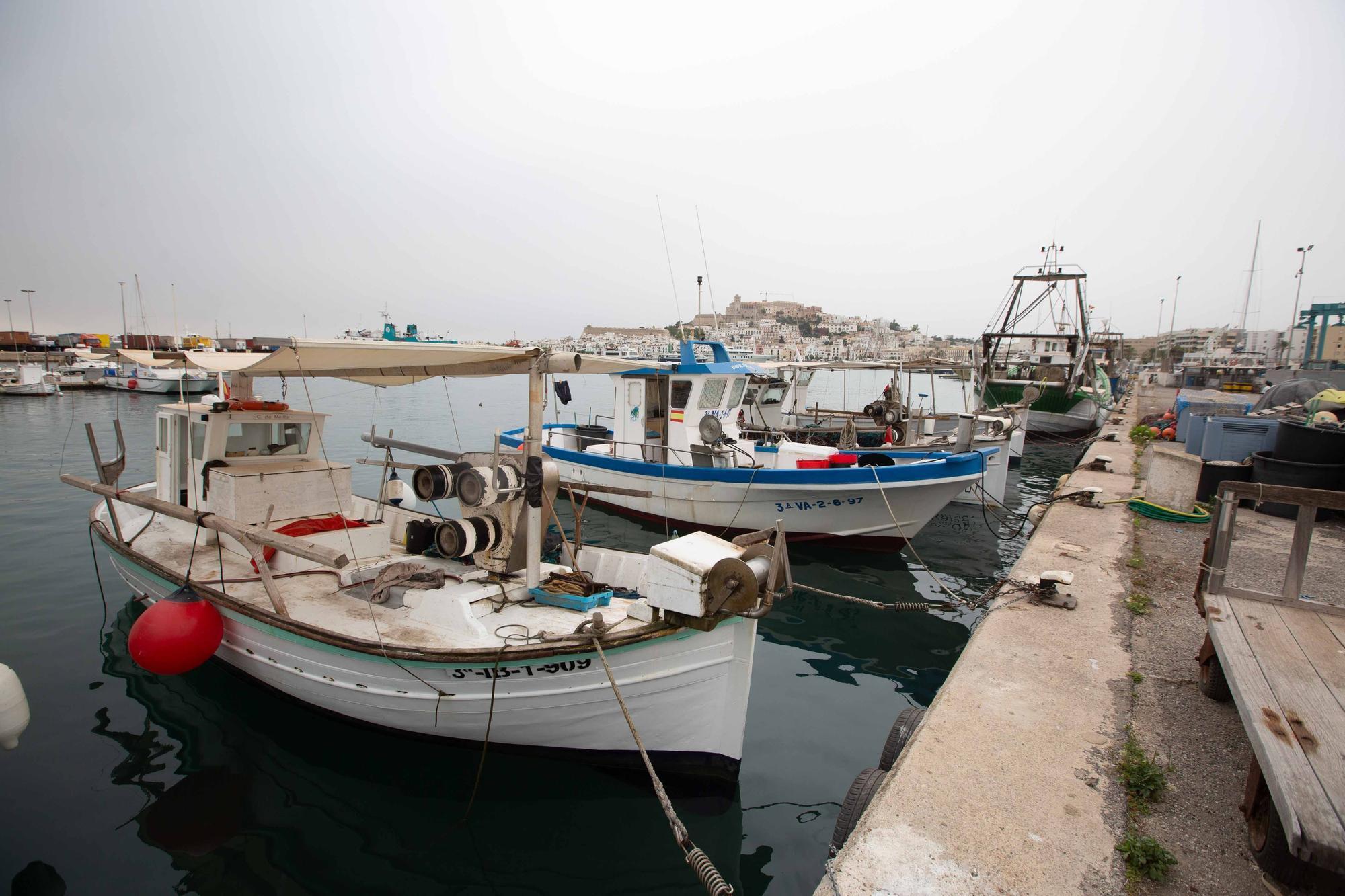 Ruta didáctica por el sector pesquero de Ibiza