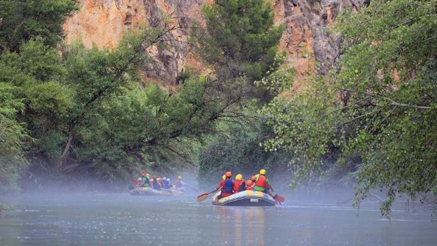 Cañón de Almadenes: El lugar donde el río Segura se resguarda y muestra su gran variedad ambiental