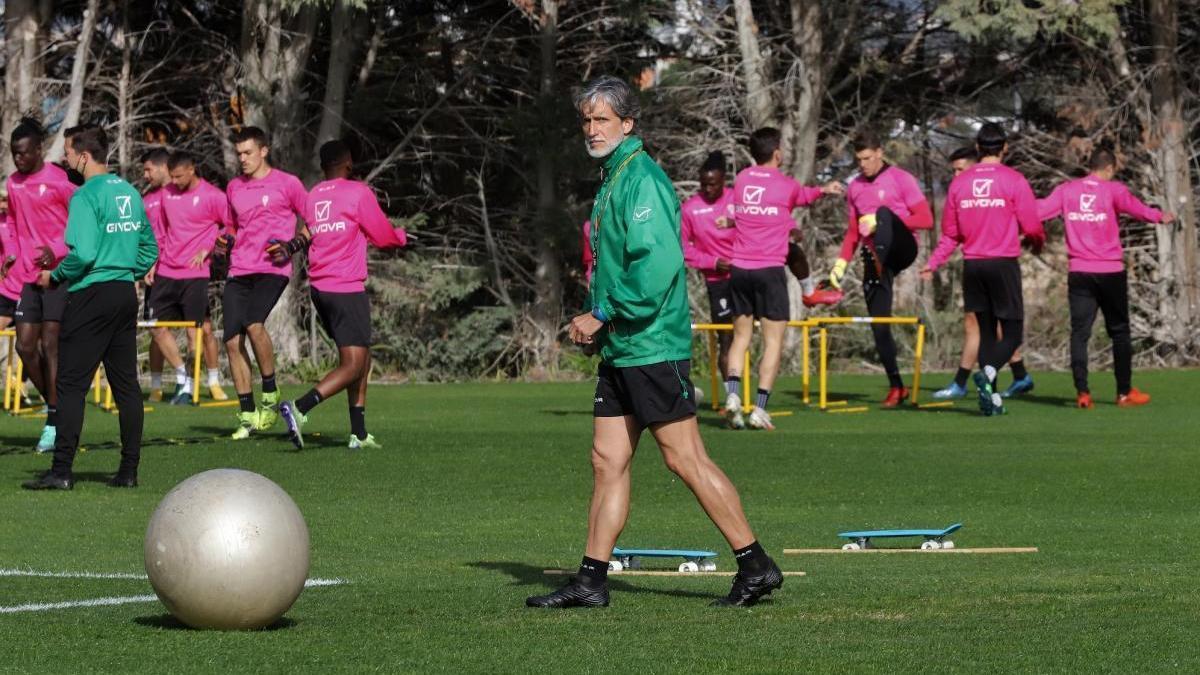 Los nueve pasos de Pablo Alfaro en el Córdoba CF