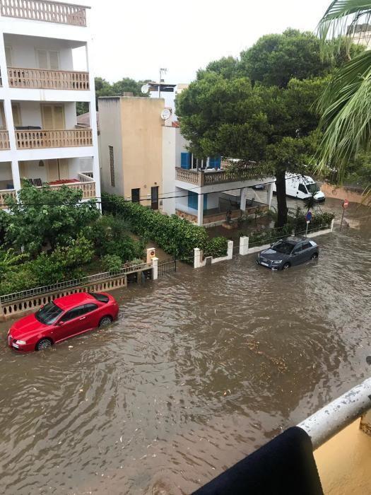 Überschwemmungen und umgestürzte Bäume auf Mallorca.