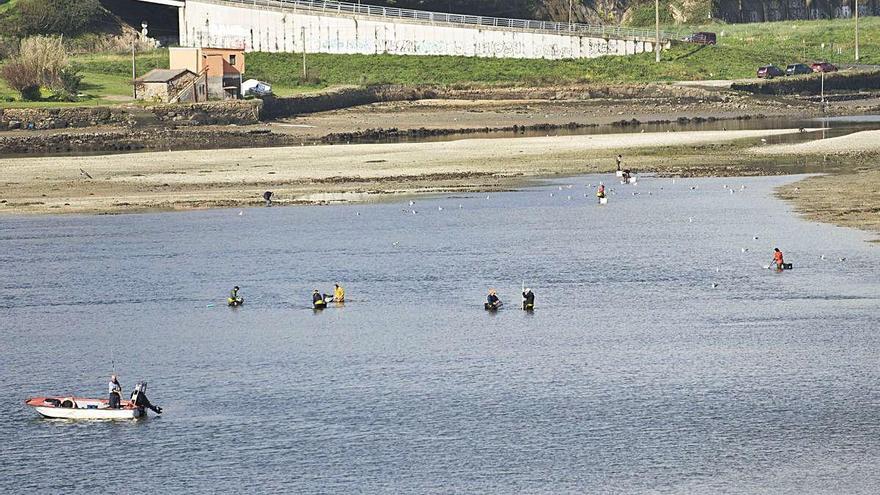 El marisqueo gallego factura un 96% menos y exige saber si es un trabajo esencial