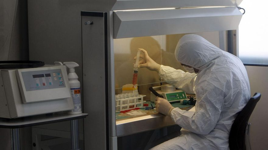 Crean anticuerpos que reconocen células tumorales, clave en la vacuna del cáncer