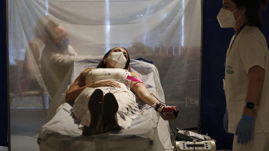 La Fundación Cajasol acoge este lunes una maratón de donación de sangre