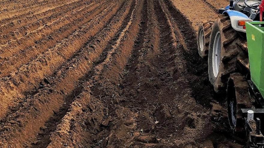 Plan urgente de desaladoras en Canarias para combatir la sequía