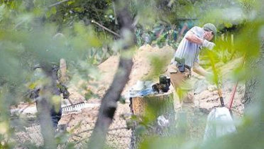 La Policía alemana excava una parcela en relación con la desaparición de Madeleine
