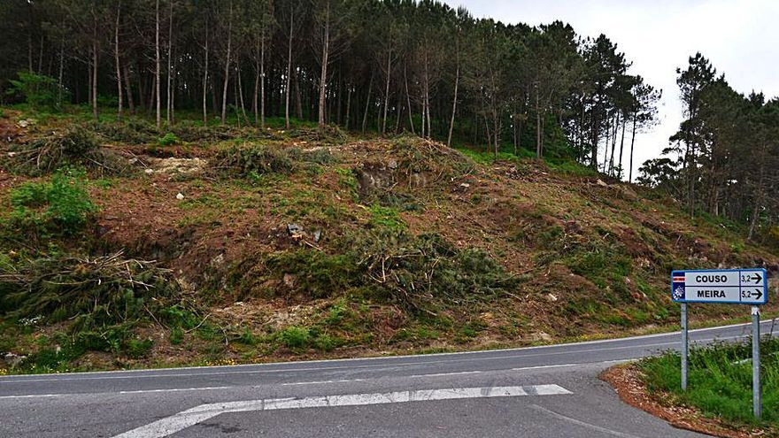 La tala de los pinos de A Fraga llega a la parte alta de la carretera general PO-313