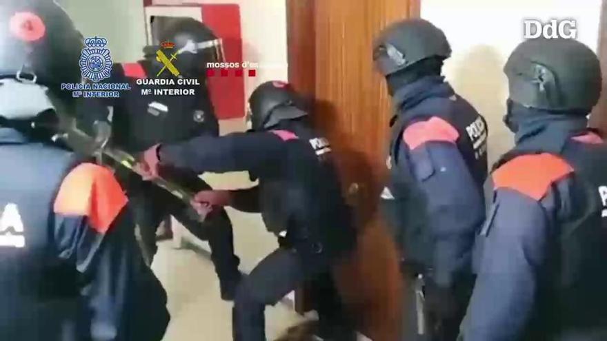 Cau una banda criminal que es dedicava al tràfic internacional de marihuana des de Catalunya