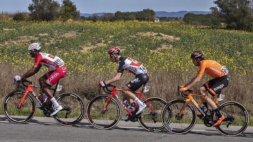 Diversos municipis gironins denuncien robatoris de bicicletes d'alta gamma