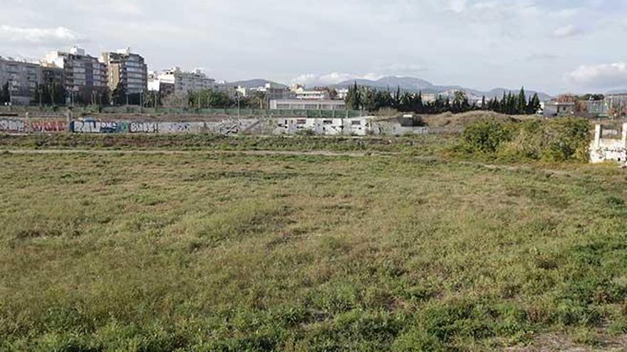 L'espai verd del Canòdrom  i el Velòdrom, un projecte irrenunciable