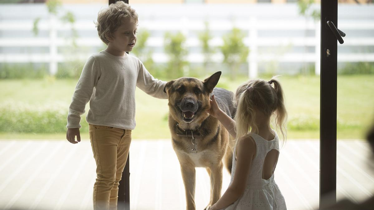 Un animal ens condicionarà la nostra vida perquè l'haurem de tenir en compte
