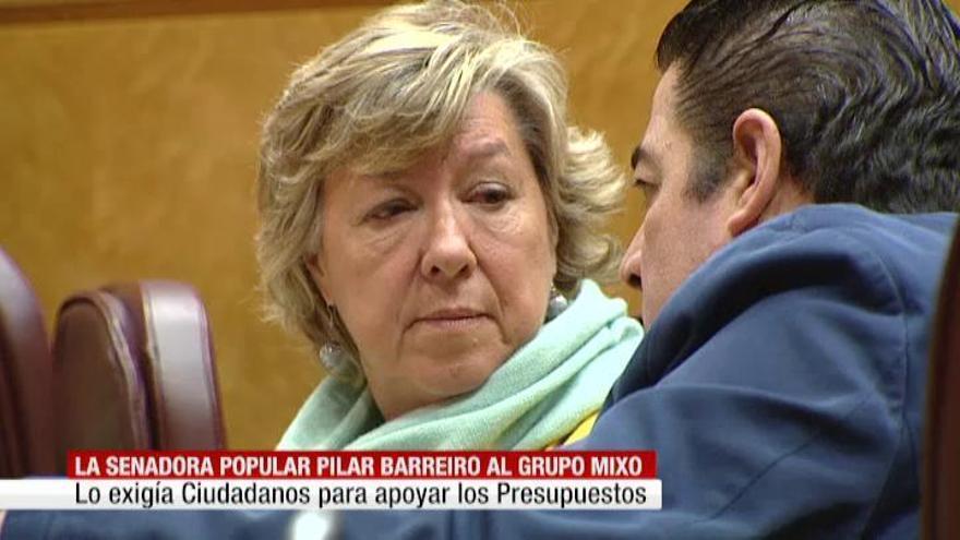 La senadora del PP Pilar Barreiro se va al grupo mixto