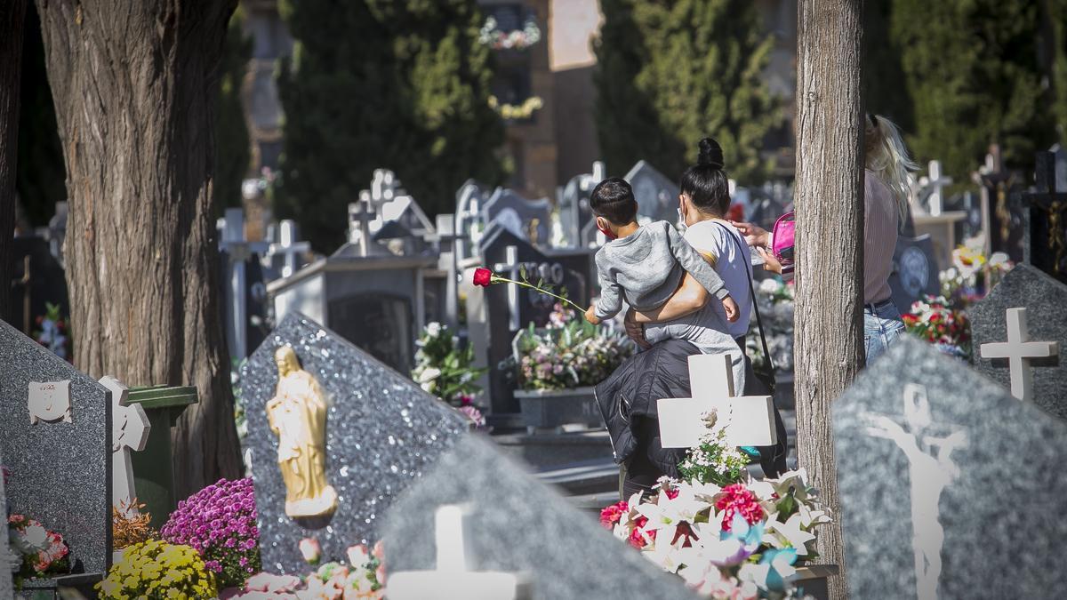 Un niño con una rosa en el Cementerio de Alicante