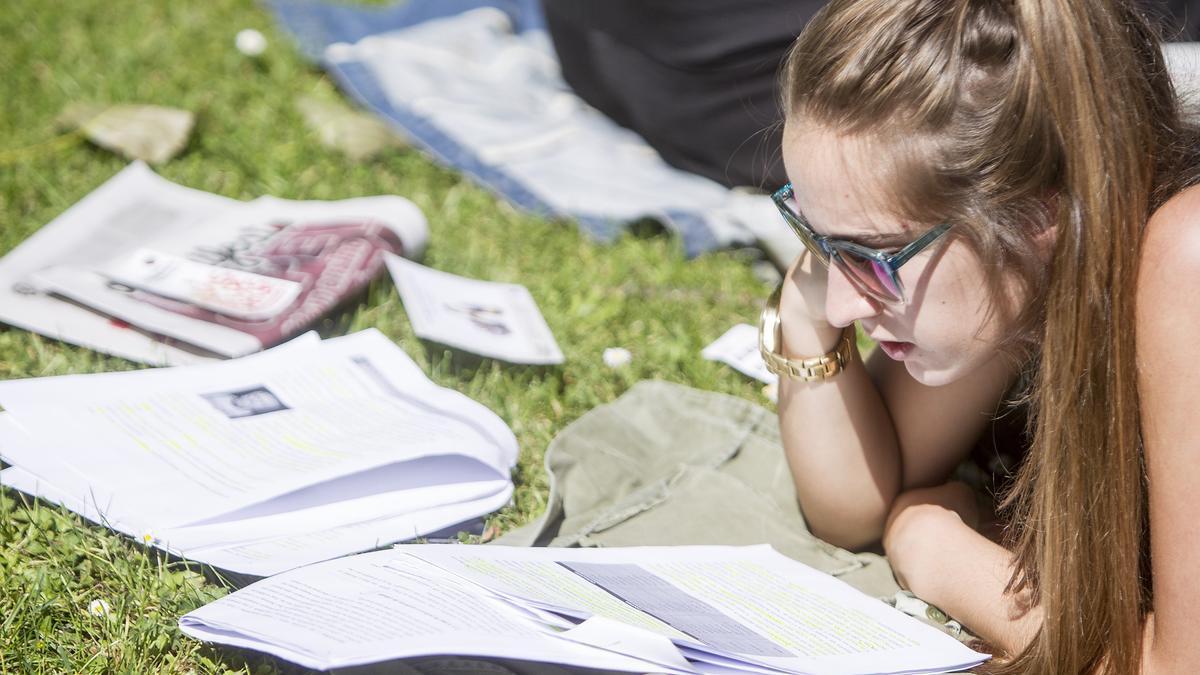 Estudiante repasando al aire libre.