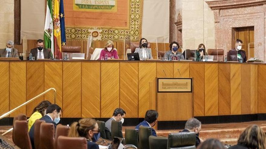 Una rata irrumpe en el salón de plenos del Parlamento andaluz y para la sesión