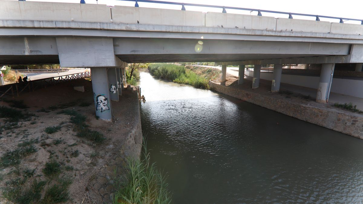 El río Segura, a la altura de Barriomar