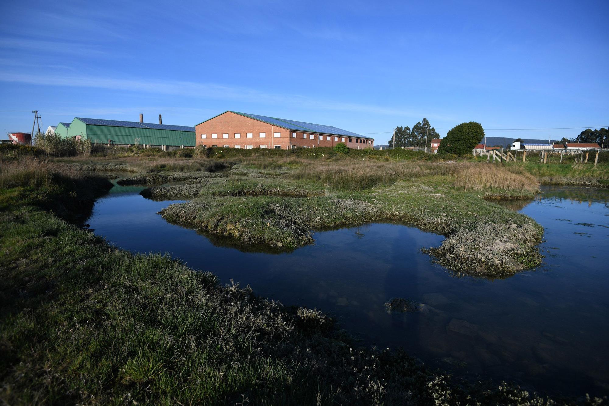 La ensenada de Arnosa, una joya histórica y ambiental