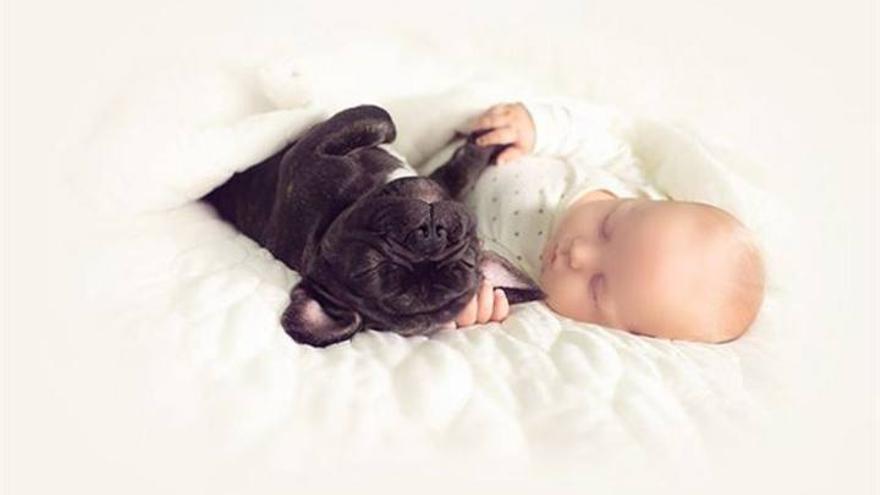 Un bebé y un bulldog, nacidos el mismo día, como hermanos