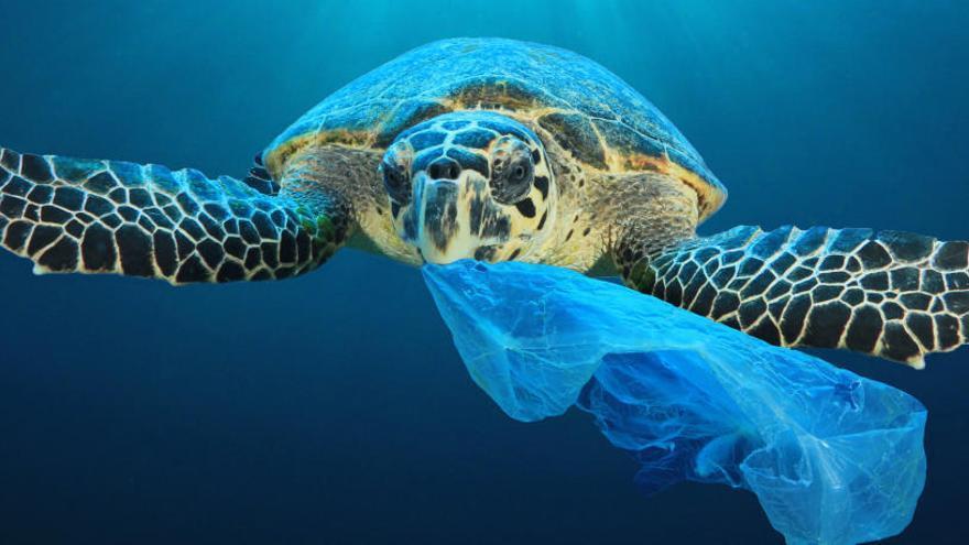 El plástico es uno de los grandes enemigos de los oceános.