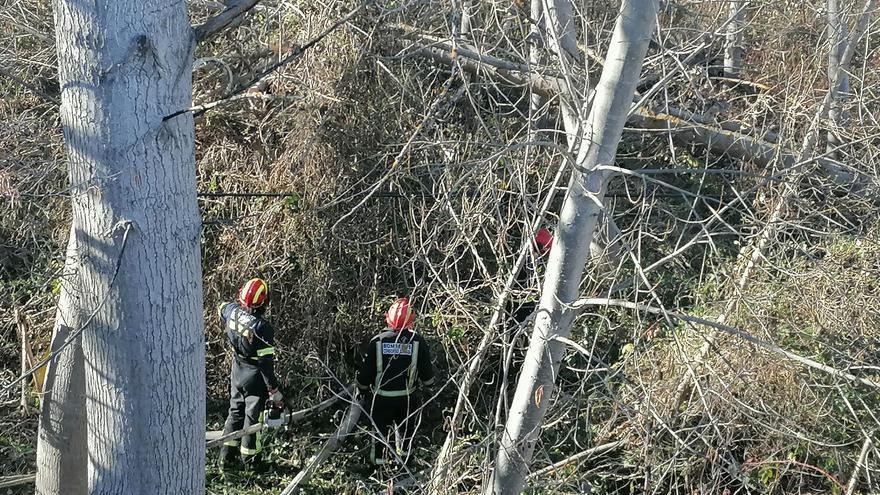 Sin suministro eléctrico vecinos de Santa Marta y Santa Croya de Tera por la caída de varios árboles sobre el tendido