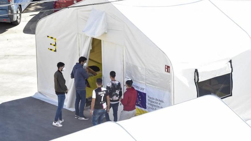 Torres expondrá en el Parlamento Europeo su rechazo a que toda la inmigración irregular se quede en Canarias
