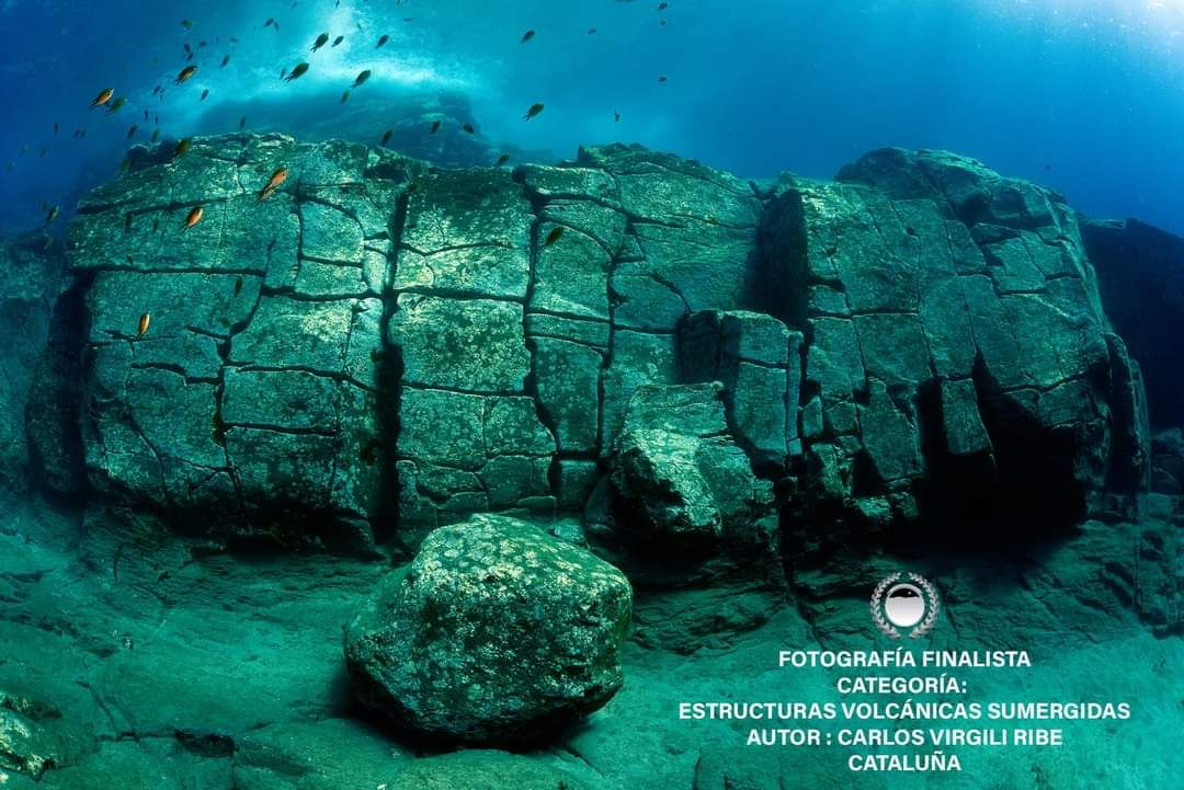 Open fotosub Lanzarote mar de lava 2020