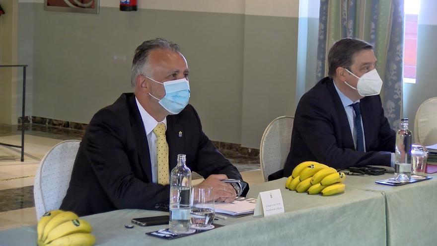 Los productores dejan la salvación del plátano en manos de Bruselas