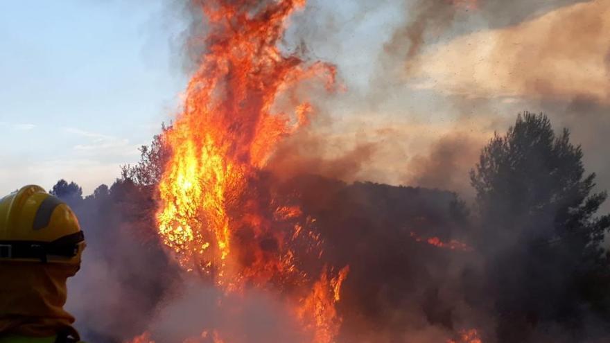 El verano 2019 registra la mitad de incendios que el año anterior en la Comunitat