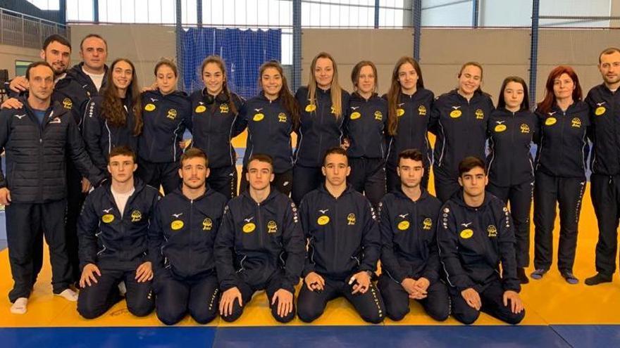 Doce medallas para Asturias en la fase de sector junior
