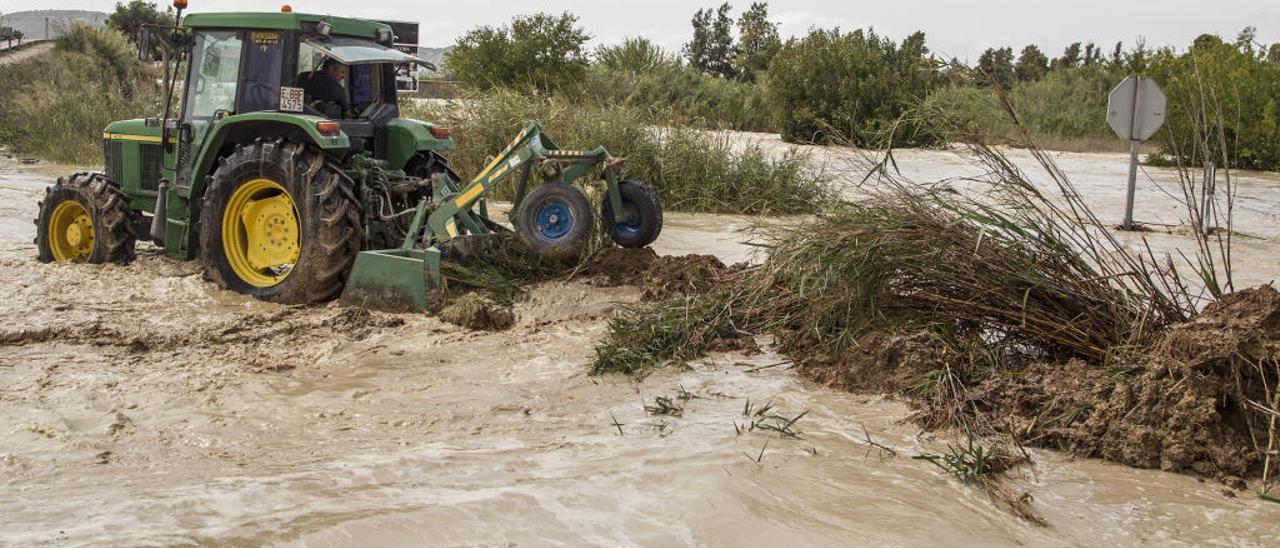 Tareas de limpieza del cañar acumulado en una carretera en la Vega Baja.