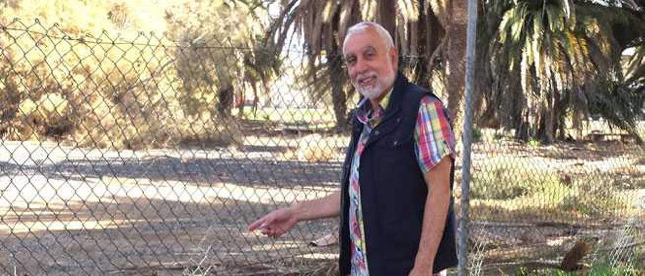 El PSOE reprocha al Cabildo el estado de  abandono del Palmeral de Maspalomas
