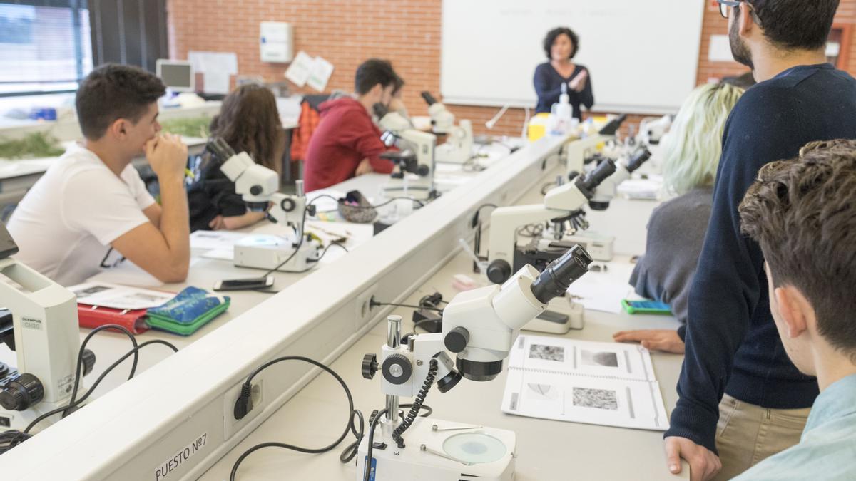 La UMH brinda a sus alumnos la posibilidad de cursar algunos de sus estudios oficiales de forma semipresencial y a distancia.