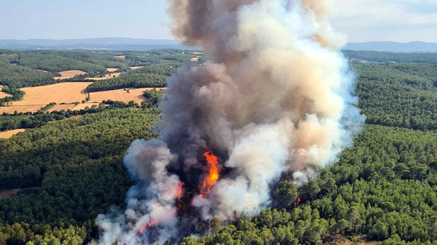 Els Bombers treballen en un incendi en una zona boscosa de Ventalló