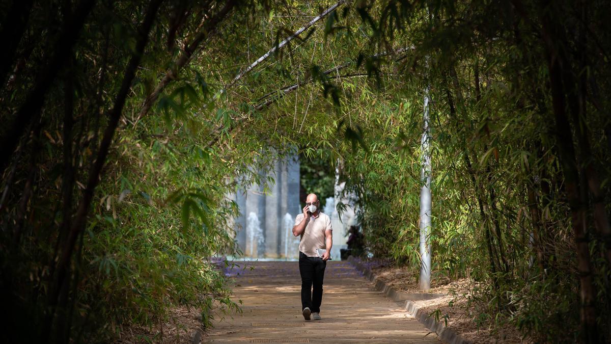 Un ciudadano camina por el Parque García Sanabria, en Santa Cruz.