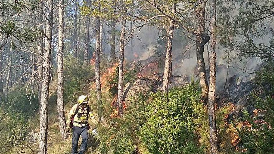 El foc controlat  a l'hivern, arma dels bombers contra els incendis de l'estiu