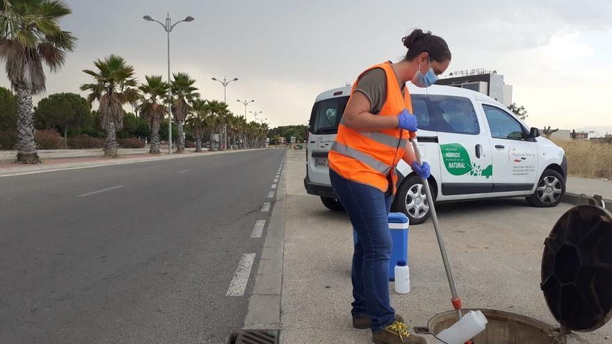 Los niveles de concentración del virus en las aguas residuales de València siguen altos