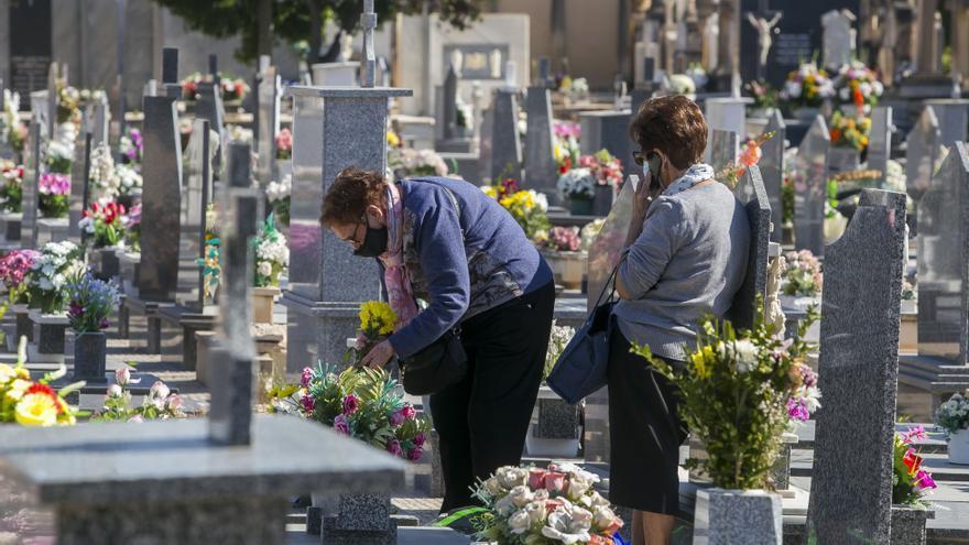 El Ayuntamiento regulariza el servicio de limpieza y mantenimiento del Cementerio de Alicante