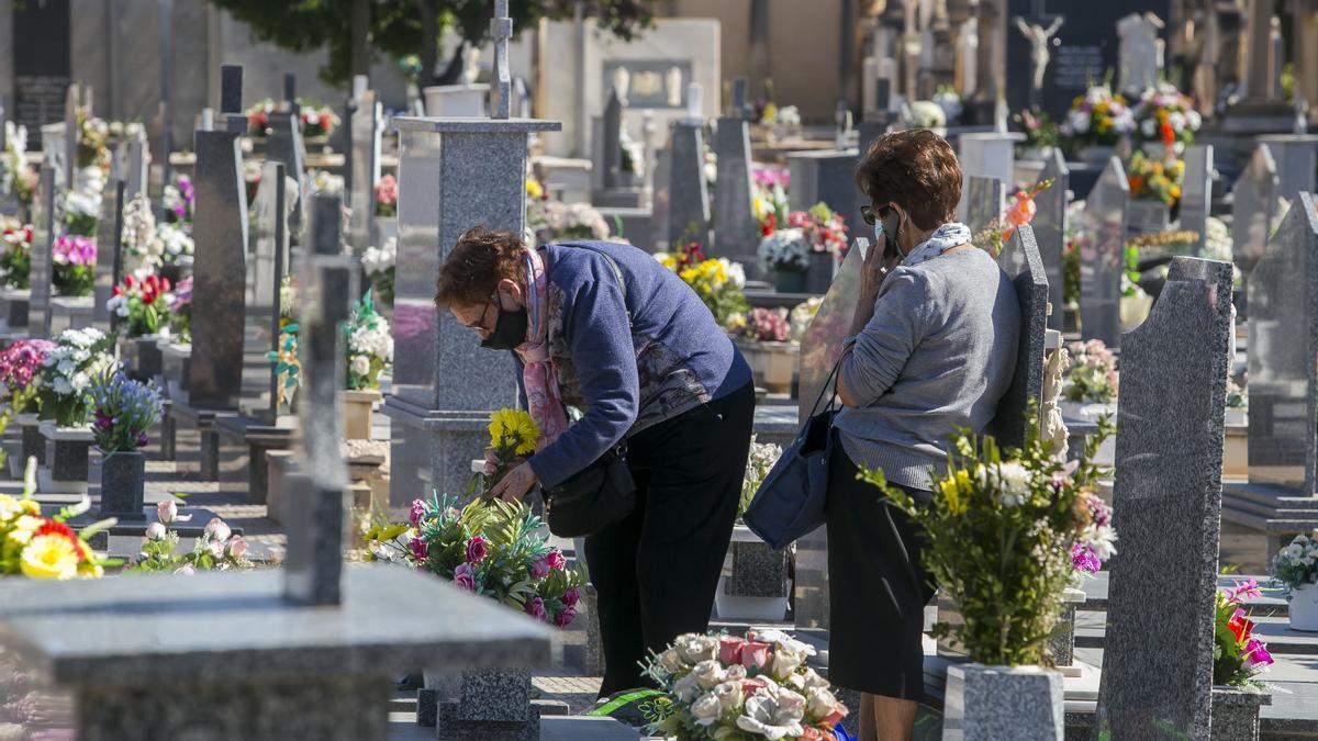 Una imagen reciente del Cementerio de Alicante