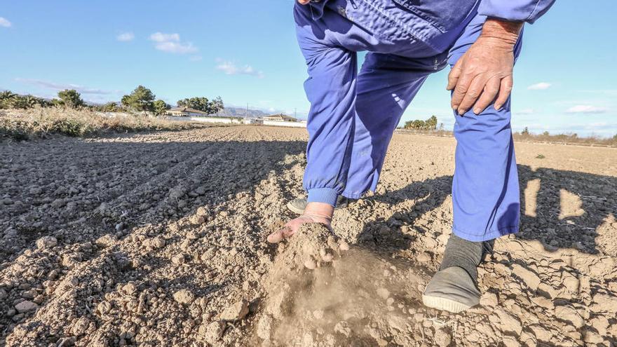 El Gobierno quiere prorrogar un año más la situación de sequía en el Segura
