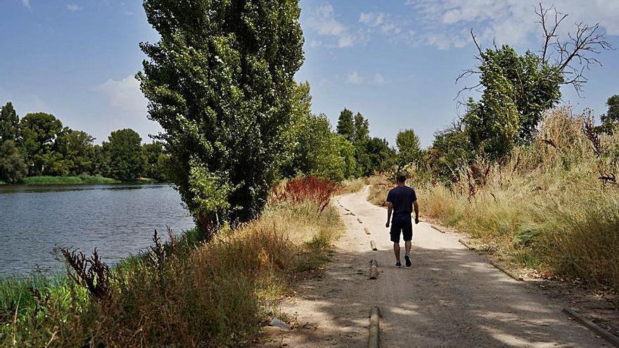 Carrascal a pie del Duero