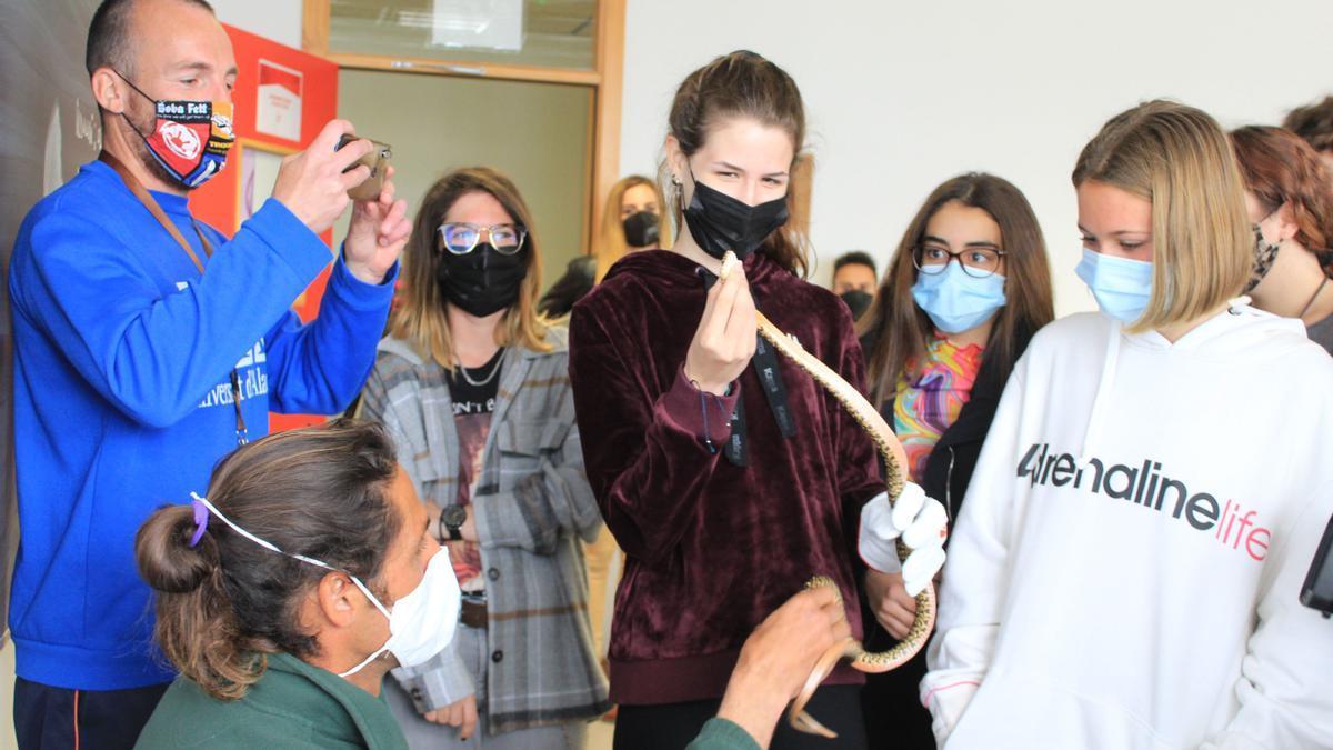 Santa Eulària forma a 200 voluntarios en la lucha contra las serpientes en Ibiza