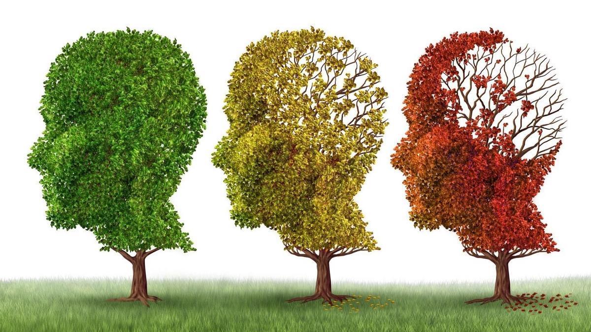 Un nou test gratuït permet la detecció precoç de l'Alzheimer