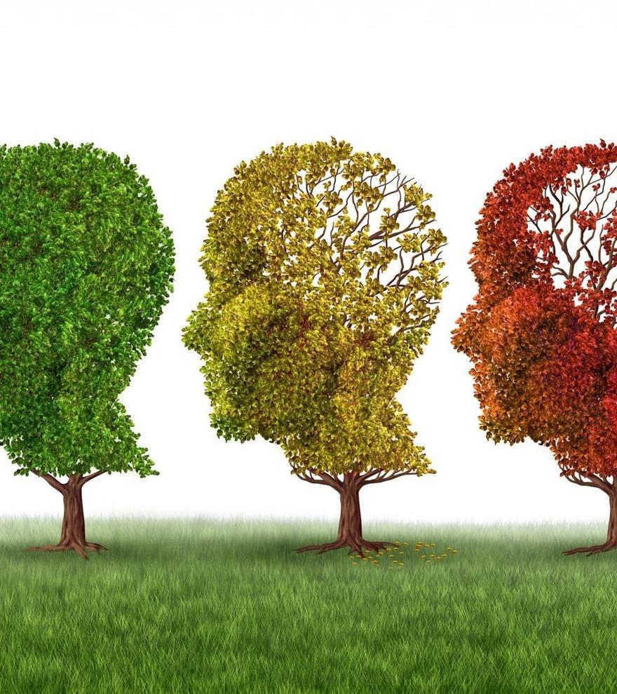 Una aplicació gratuïta permet la detecció precoç de l'Alzheimer