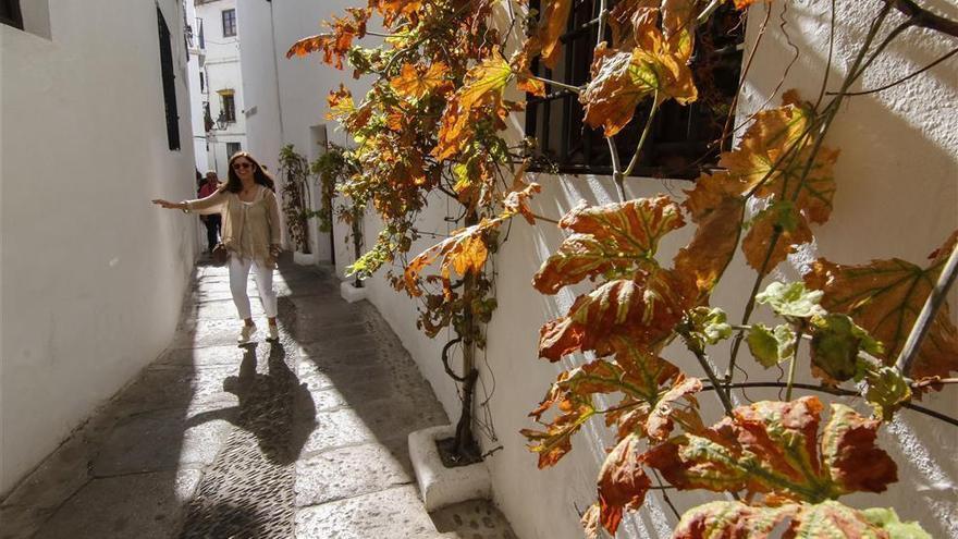 Demandan al Ayuntamiento por el Festival de las Callejas