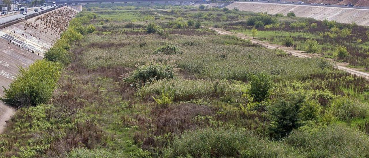 València pide agua a la CHJ para que el nuevo cauce vuelva a ser un río