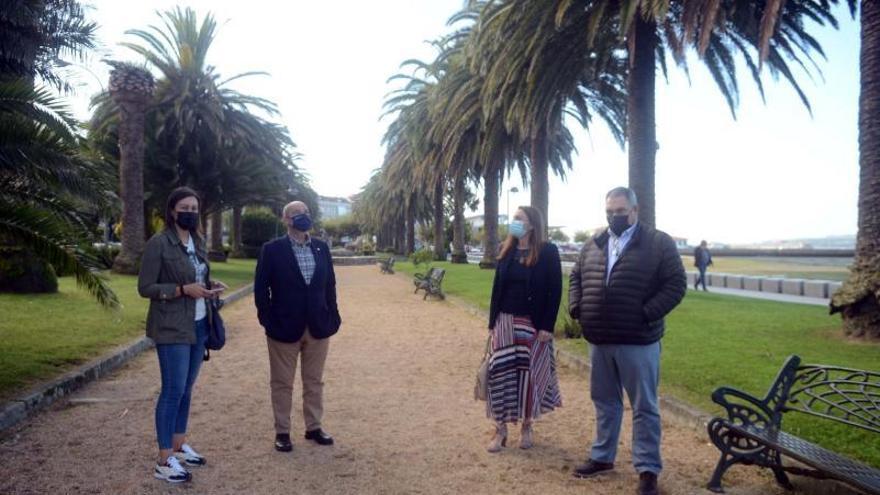 Aragunde acusa al gobierno local del mal estado de las palmeras de A Calzada