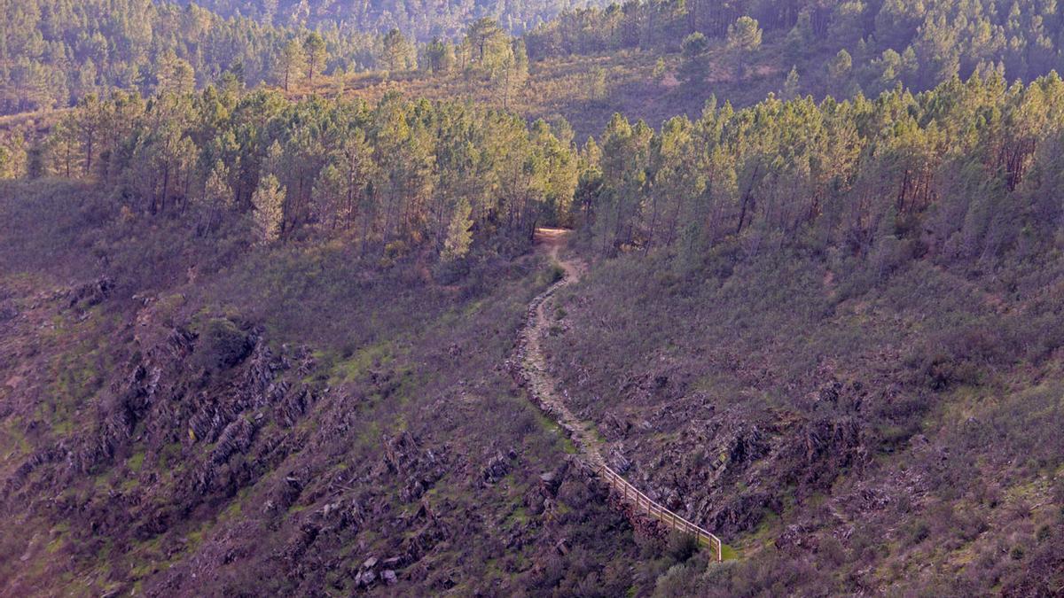 Una imagen de Las Hurdes. Los trabajos se llevarán a cabo en el municipio de Caminomorisco, cuyos montes están catalogados de titularidad pública.